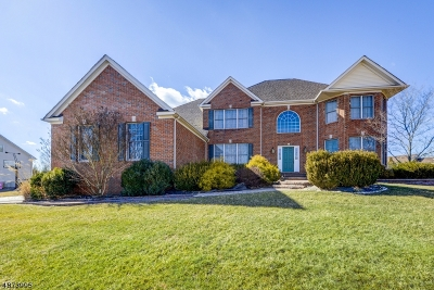 Montgomery Twp. Single Family Home For Sale: 18 Squirrel Dr