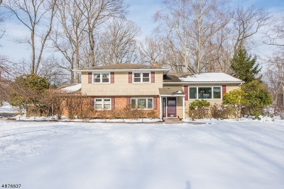 Parsippany-Troy Hills Twp. Single Family Home For Sale: 20 Brooklawn Dr