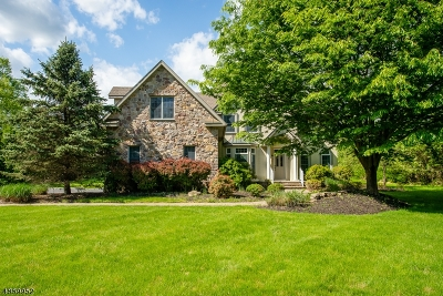 Warren Twp. Single Family Home For Sale: 68 Dock Watch Hollow Rd