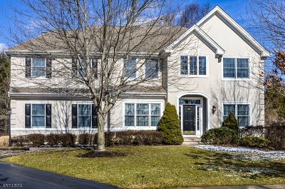 Montgomery Twp. Single Family Home For Sale: 7 Wild Dunes Ct