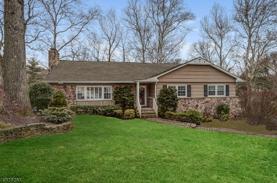 Mountainside Boro Single Family Home For Sale: 1450 Fernwood Rd