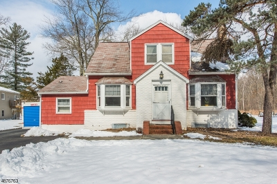 East Hanover Twp. Single Family Home For Sale: 456 River Rd