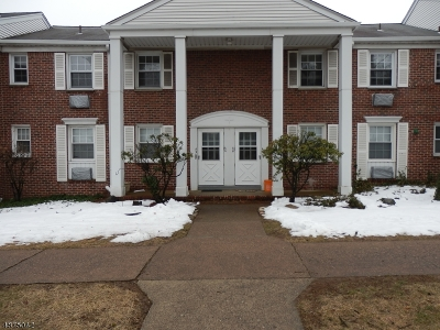 Springfield Twp. Condo/Townhouse For Sale: 445 Morris Ave A-4 #4