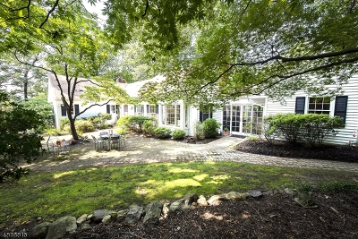 Mountain Lakes Boro Single Family Home For Sale: 046 Lake Dr