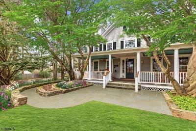 Mendham Boro, Mendham Twp. Single Family Home For Sale: 29 Hilltop Rd