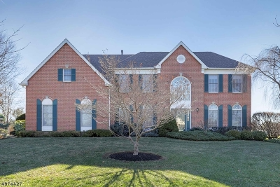 Montgomery Twp. Single Family Home Active Under Contract: 18 Creekview Ct