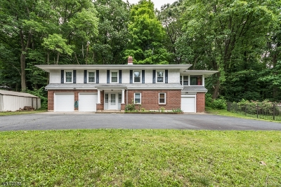 Long Valley Single Family Home For Sale: 155 Route 46