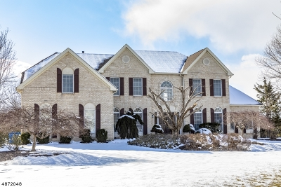 Montgomery Twp. Single Family Home For Sale: 34 Vanderveer Dr