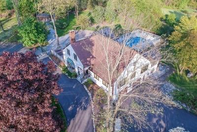Califon Boro Single Family Home For Sale: 4 Big Oak Way