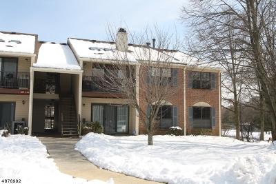 Bernards Twp., Bernardsville Boro Condo/Townhouse For Sale: 210 Irving Pl