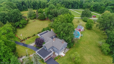 Sussex County Single Family Home For Sale: 20 Dickson Rd
