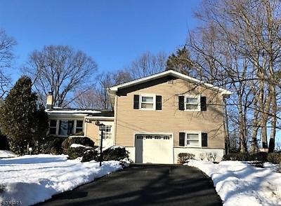 Rockaway Twp. Single Family Home For Sale: 3 Calumet Ave
