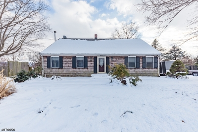 Hillsborough Twp. Single Family Home For Sale: 852 Amwell Rd