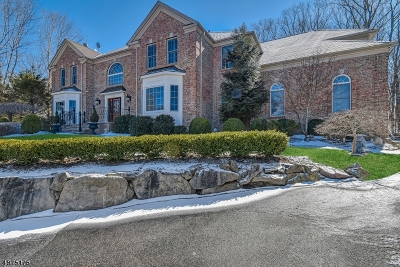 Randolph Twp. Single Family Home For Sale: 22 Shadowbrook Way