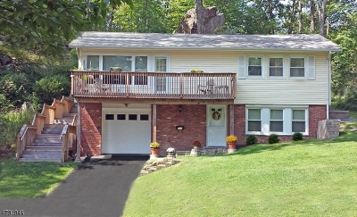 Sparta Twp. Single Family Home For Sale: 195 W Shore Trl