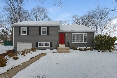 Hanover Twp. Single Family Home For Sale: 3 Holley St