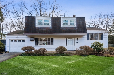 Franklin Twp. Single Family Home For Sale: 142 Drake Rd