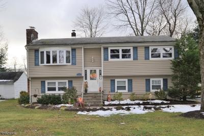 Denville Twp. Single Family Home For Sale: 15 Harriman Ave