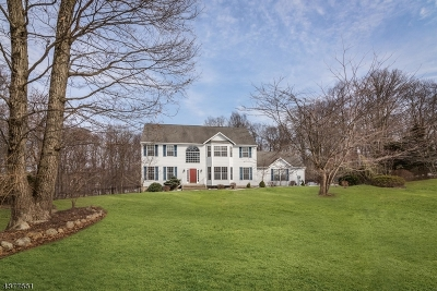 Hardyston Twp. Single Family Home For Sale: 32 Stonehedge Dr