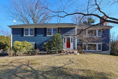 Mountainside Boro Single Family Home For Sale: 1421 Coles Ave