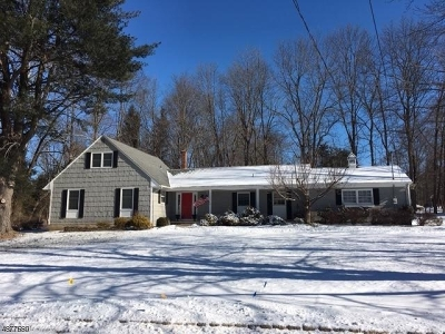 Mendham Boro NJ Single Family Home For Sale: $549,900