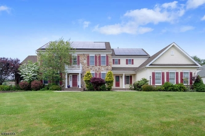 Raritan Twp. Single Family Home For Sale: 1 Beehive Ln