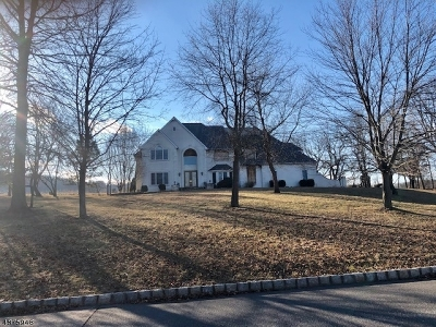 Hunterdon County Single Family Home For Sale: 5 Four Seasons Dr