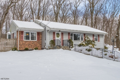 Parsippany-Troy Hills Twp. Single Family Home For Sale: 100 W Hanover Ave