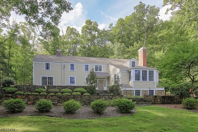 Bridgewater Twp. Single Family Home For Sale: 951 N Mountain Ave