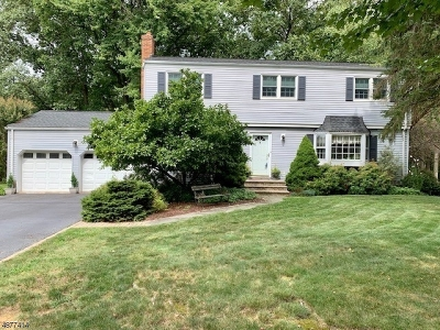 Mendham Boro NJ Single Family Home For Sale: $650,000