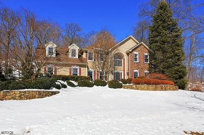 Denville Twp. Single Family Home For Sale: 40 Cambridge Ave