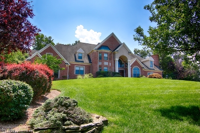 Warren Twp. Single Family Home For Sale: 20 Thistle Ln