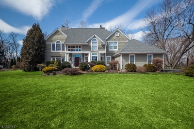 Chester Boro NJ Single Family Home For Sale: $775,000
