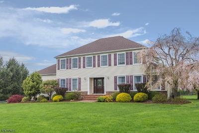 Bernards Twp., Bernardsville Boro Single Family Home For Sale: 211 Woods End