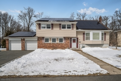 West Caldwell Twp. Single Family Home For Sale: 43 Memorial Rd