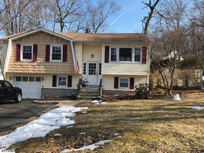 Rockaway Twp. Single Family Home For Sale: 12 Anderson Ave