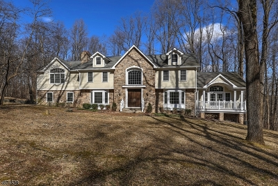 Harding Twp. NJ Single Family Home For Sale: $1,250,000