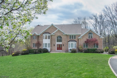 Bernards Twp. NJ Single Family Home For Sale: $1,350,000