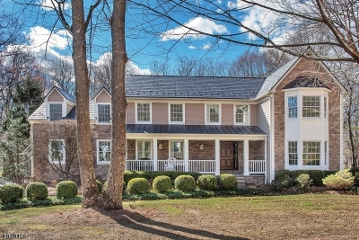 Randolph Twp. Single Family Home For Sale: 34 Heritage Ct