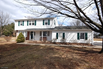 Branchburg Twp. Single Family Home For Sale: 32 Harlan School Rd