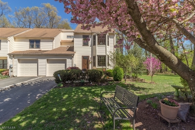 Raritan Twp. Condo/Townhouse For Sale: 218 Burlington Court