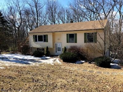 Hardyston Twp. Single Family Home For Sale: 9 Alpine Rd
