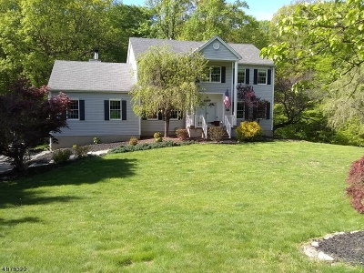 Randolph Twp. Single Family Home For Sale: 34 Wilkeshire Blvd