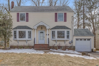 Livingston Twp. Single Family Home For Sale: 25 Mounthaven Dr