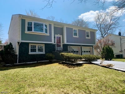 Roseland Boro Single Family Home For Sale: 34 2nd Ave