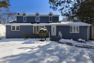 Wayne Twp. Single Family Home For Sale: 24 Kievit Rd