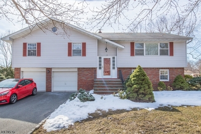Parsippany-Troy Hills Twp. Single Family Home For Sale: 17 Mc Neile Dr