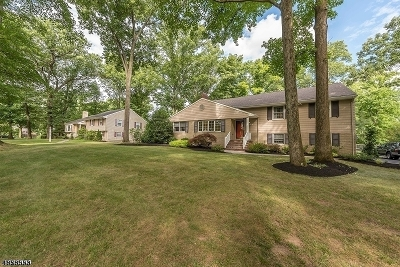 Scotch Plains Twp. Single Family Home Active Under Contract: 2081 Brookside Dr