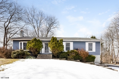 Hunterdon County Single Family Home For Sale: 44 Charlestown Rd