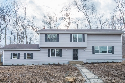Randolph Twp. Single Family Home For Sale: 2 Wooded Hill Ln